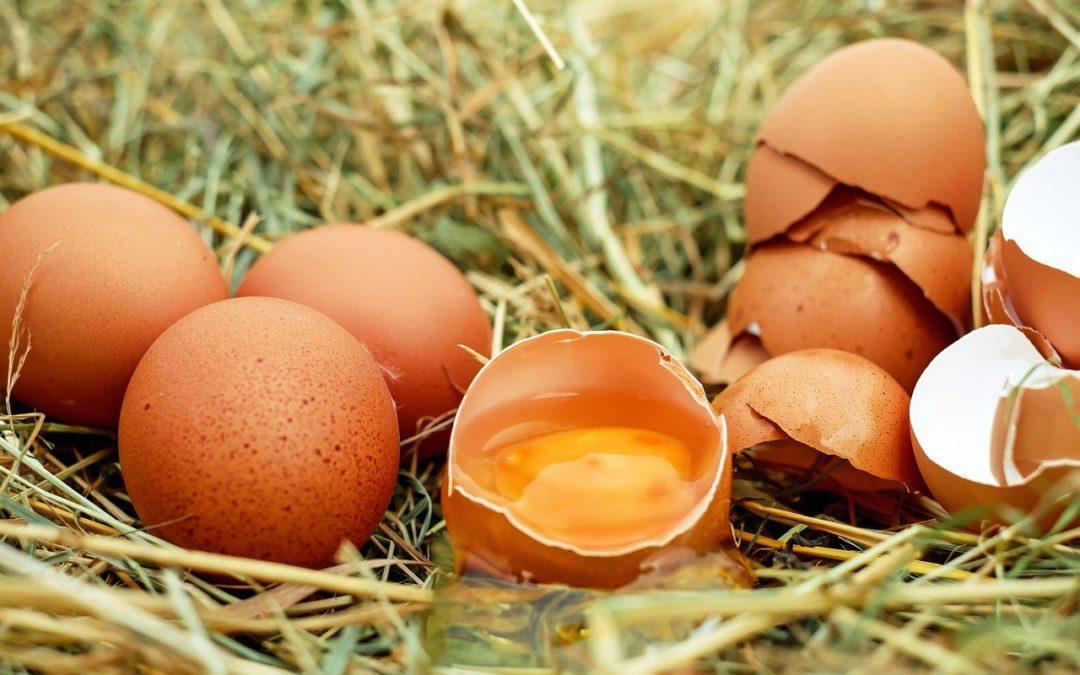 Pasta jajeczna [PRZEPIS]